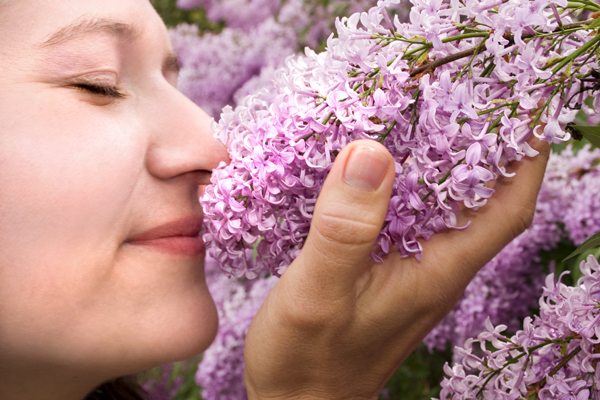 Positive Energy and Sense of Smell
